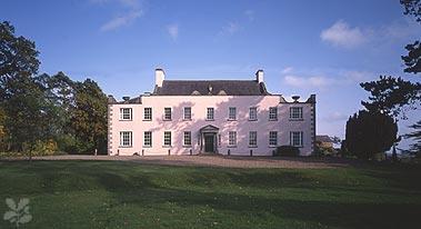Go Batty Ardress House